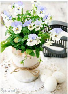 17 DIY Spring Gardens Ideas!