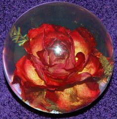 Hippocampus Red Rose Resin Paperweight