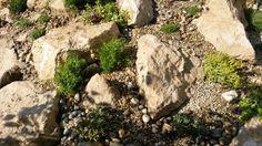 Kreakert sziklakert 2014 junius