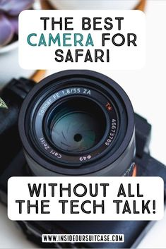 Looking at getting an upgrade to capture the beautiful wildlife on Safari? If like me your not sure whether you would use it again check out the best camera for safari without all the tech talk! Best Camera For Photography, Photography Tips, Travel Photography, Travel Advice, Travel Tips, Travel Packing, Budget Travel, Travel Guides, Travel Destinations