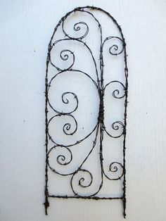 plant support vine wire fun shapes - Google Search