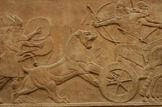"""Lion Hunt Assyrian (865-860 BC) British Museum, London """"King Ashurnasirpal shoots at a wounded lion. Killing lions was a royal sport in Assyria, symbolising the king's role as protector of civilisation against savagery, and Ashurnasirpal claims to have killed 450 lions in all."""""""