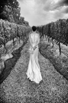Willow Creek Winery weddings James Harvie Photography