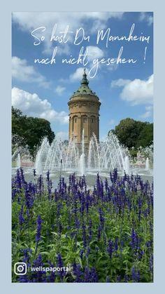 Parks, Movie Posters, Movies, Nature Reserve, Mannheim, Travel Report, Road Trip Destinations, Explore, Films