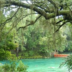 "<b><a href=""https://www.floridastateparks.org/park/Fanning-Springs"">Fanning Springs</a></b> <br>18020 Northwest U.S. 19-98, Fanning Springs, FL 32693 <br><b>Estimated travel time: 2 hours, 11 minutes from Orlando</b> <br><br>In the 1950s, Fanning Springs used to have a roller rink. Now, in an effort to maintain the park's natural beauty, guests forgo the cheesy disco lights in favor of clear blue springs, a sandy volleyball court and hikes through a hardwood forest. Or, if you want to relax…"