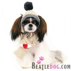 puppyzzang dog angel wing knit hat or scarf
