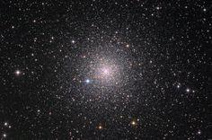 A big star cluster! So pretty!