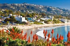 Laguna beach california - (#149284) - High Quality and Resolution Wallpapers on hqWallbase.com