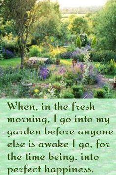 When, in the fresh morning, I go into my garden before anyone else is awake I go, for the time being, into perfect happiness.