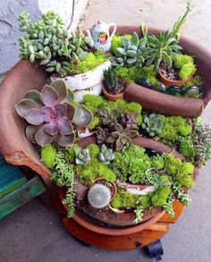 broken-pot-fairy-garden-19 2