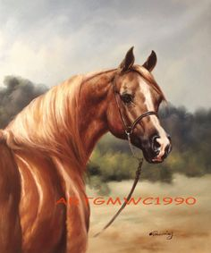 Sold - Arab Arabian Stallion horse portrait oil painting on canvas - Frame not included