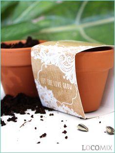 Laat jullie liefde groeien met deze originele groene bedankjes! De Bloempotjes bedankjes zijn ideaal als jullie een uniek geschenkje zoeken om jullie gasten mee te bedanken. Jullie kunnen kiezen uit verschillende soorten bloemzaadjes, zoals Klavertje Vier, Zonnebloem en Aardbei. De wikkel die om het terracotta potje zit is helemaal naar wens op te maken. Kies een mooi design en maak het eigen op Bedankjes.nu.