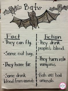 It's All About the Bats, the Bats, and a FREEBIE! by First Grade Shashay