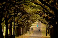People walking through Fawkner Park, South Yarra, Australia