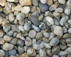 Using unusual and local shingles or pebbles in bedding areas and borders helps keep the weeds down, therefore less work for you!  #shingle #gravel #gardens