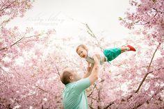 Spring Cherry Blossom Shoot