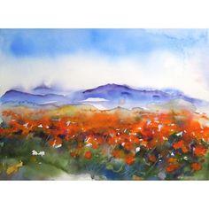 California poppies watercolor - Alisa Wilcher