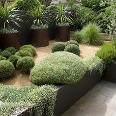 aménagement-jardin-moderne-arbustes-palmiers-graminées-ornementales