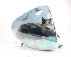 Do you have an iCat?  Amazing upcycled use for old iMacs....for the kitty that has everything?