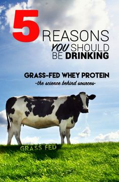 5 Reasons You Should Be Drinking Grass Grass-Fed Whey Protein!
