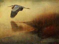 Bird Disturbed by R Christopher Vest