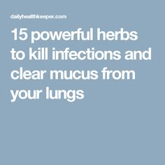 15 powerful herbs to kill infections and clear mucus from your lungs