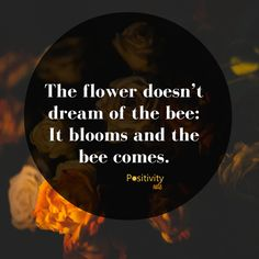 The flower doesnt dream of the bee: It blooms and the bee comes. #positivitynote #positivity #inspiration