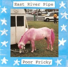 East River Pipe - Poor Fricky.
