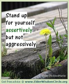 Stand up for yourself assertively but not aggressively. ElderWisdomCircle.org #advice #quotes #inspiration