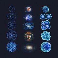 Similitudes entre les mathématiques, l'astronomie et la biologique.  #mathematics #mathematiques #astronomy #astronomie #astro #biology #biologie #life #existence #existential #existentialism #questions #mystery #mystere #reflexion #meditation #cell #geometry #geometrie #science #picoftheday #freedom #freespirit #espritslibres