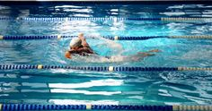 """""""Swimming is a Sport Everything Else It's Just a Game"""""""