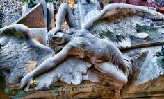 What a magnificent sculpture of a distressed Angel draped over a tomb.  One of Europe's most significant cemeteries, Staglieno
