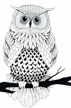 Owl Free Printable Coloring Pages –> If you're looking for the top coloring books and writing utensils including gel pens, […] Make your world more colorful with free printable coloring pages from italks. Our free coloring pages for adults and kids. Free Printable Coloring Pages, Coloring Book Pages, Black And White Owl, Illustration, Owl Art, Art Drawings, Drawing Owls, Drawing Animals, Doodles