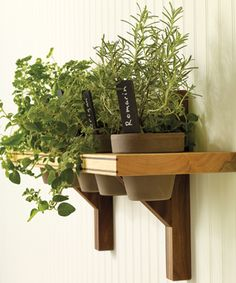 Fresh #herbs are a great asset to have in the kitchen. Now you can display your favourite selection of fine herbs as tastefully as the meals they enhance with this #DIY Potted Herb Shelf.