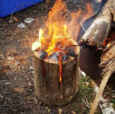 For your campfire, try the Swedish torch method: No need for extra pot supports + it looks cool. | 20 Camping Food Hacks That Will Blow Your Mind