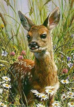 Animalistika-Carl-Brenders.-Vesna.-Akvarel