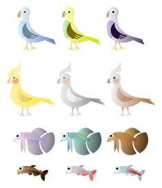 Simple birds and fishes color drawing