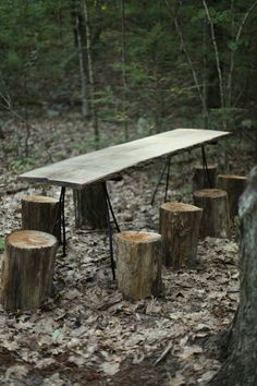 cabin . woods . forest table & chairs