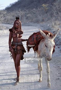 Namibia, Kaokoland, Empembe. After visiting a market centre, a young Himba woman drives home her donkey along dusty white tracks. Her body gleams from a mixture of red ochre, butterfat and herbs. Her long hair is styled in the traditional Himba way and is