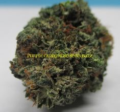 1 Online Dispensary in Canada. If you are looking for amazing Cannabis & Marijuana products such as Flower, Edibles, Shatter, Indica and Concentrates click here. Buy Cannabis Online, Buy Weed Online, Find A Match, Chinese Medicine, Medical Marijuana, How To Become, Abs, Canada, Flower