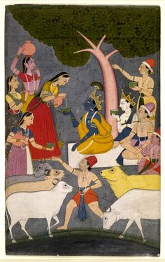 An illustration from the Sur Sagar, written by Sur Das. Kṛṣṇa sitting under a tree with the Gopas (cowherds). They are receiving milk from the Gopis (milkmaids), while their cows congregate in the foreground.       Pahari School,      Chamba Style.  Date      1730-1740 (circa).      Painted in: Panjab Hills