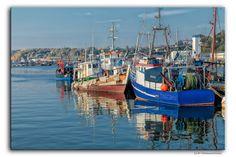 Haven of Sassnitz    #Hafen #Deutschland #Germany #Rügen #Insel #Schiffe #Ship #Meer #Mare #Fische #Fish #Flickr #Foto #Photo #Fotografie #Photography #canon6d #Travel #Reisen #德國 #照片 #出差旅行 #Urlaub