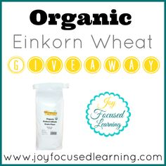 Giveaway: Organic Einkorn Whole Wheat Flour from Tropical Traditions! | Joy Focused Learning