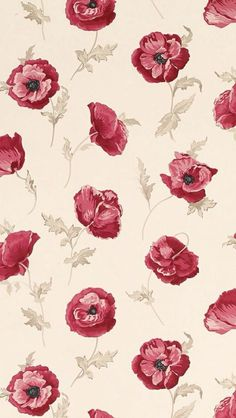 roses on tan background wallpaper (luadevenus)                                                                                                                                                                                 Mais