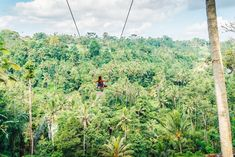 Swinging high over the trees at Bali Swing