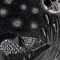 Goose and fireflies/Amber 1 - Catherine Rowe Illustration