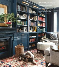 blue bookcases, cozy den and gorgeous rug