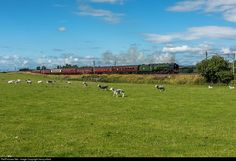 RailPictures.Net Photo: UK Steam 4-6-2 at Carlisle, United Kingdom by henry elliott
