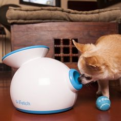 Gift ideas for dogs. iFetch Interactive Ball Launcher