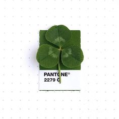Pantone 2279 color match to a clover leaf.  According to tradition, such leaves bring good luck. Each leaf is believed to represent something: the first is for faith, the second is for hope, the third is for love.  #pantone